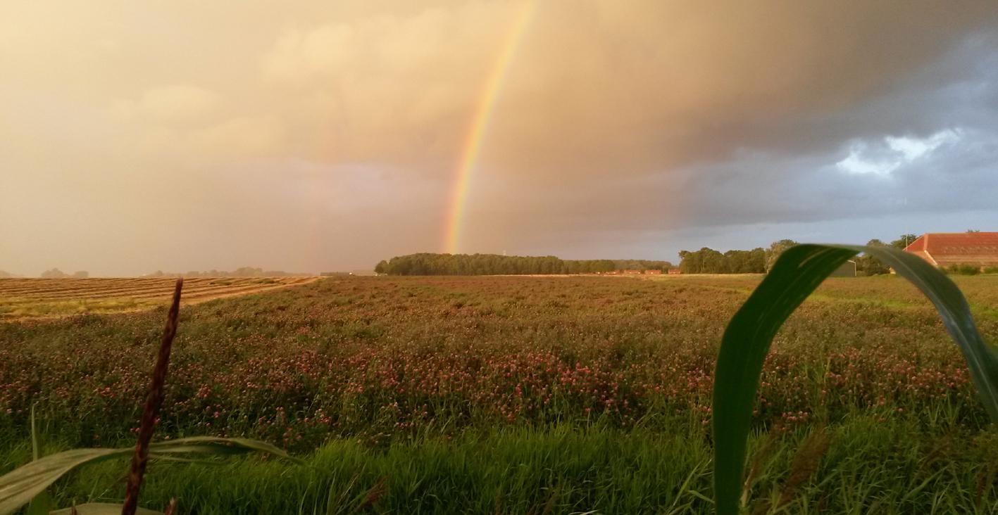 2. Het einde van de regenboog in  Oostwold